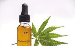 Cannabisvital Oil – Aktion – in apotheke – anwendung