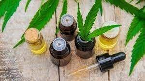 Cannabisvital Oil – bestellen – comments – kaufen