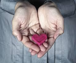 Cardiol – erfahrungen – kaufen – preis