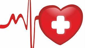 Cardiol – für Bluthochdruck - inhaltsstoffe – in apotheke – forum