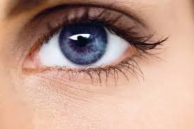 Optivision – besseres Sehvermögen - test – kaufen – erfahrungen