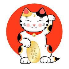 Lucky Cat - test - in apotheke - Nebenwirkungen