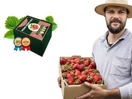Home Berry Box - hausgemachte Erdbeeren - Unterricht - preis - Erfahrungen