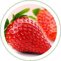 Home Berry Box - Inhaltsstoffe - anwendung - kaufen