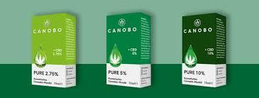 Canobo Cbd – inhaltsstoffe – preis – test