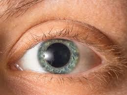 Oculissan - gesündere Augen - erfahrungen - inhaltsstoffe - anwendung