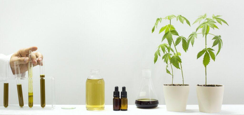 Greenboozt CBD Oil – kaufen – Deutschland – erfahrungen