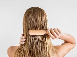 Chevelo Shampoo erfahrungen - comments - kaufen