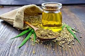 Cannabis Oil - forum - bestellen - bei Amazon - preis