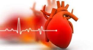 Cardione - erfahrungen - Stiftung Warentest - bewertung- test